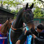 sprinter-sacre