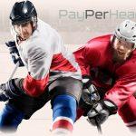 payperhead247-hockey