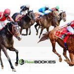 realbookies-horse